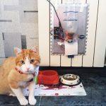 用Arduino Uno制作一个智能的自动宠物喂食器(续)